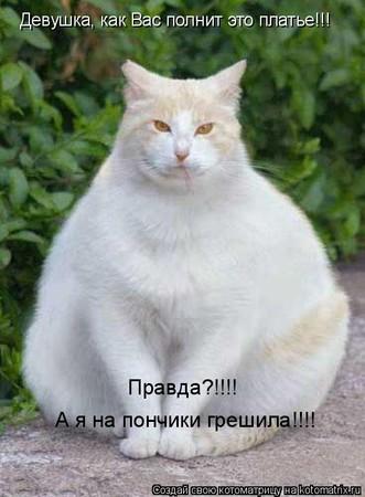 http://img.babyblog.ru/1/4/d/14d63487548fb22e40a662dc094b6c8f.jpg