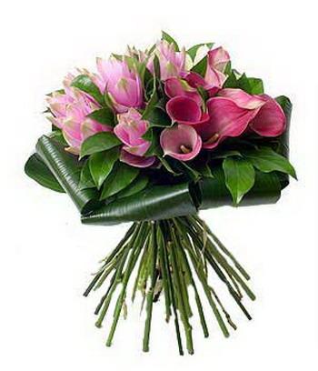 http://img.babyblog.ru/1/6/5/16514b4f913d6b2f3bfd66c12d1da394.jpg
