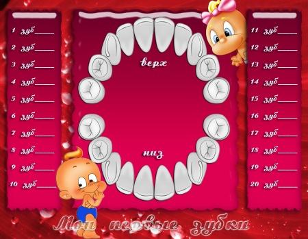 График роста зубов