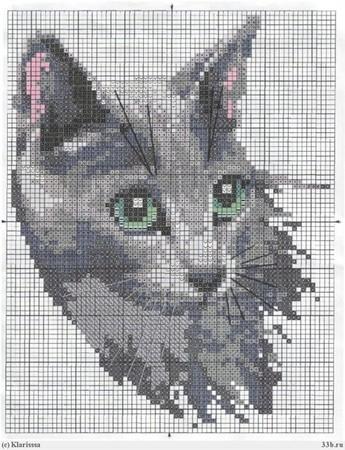 Схемы кошек