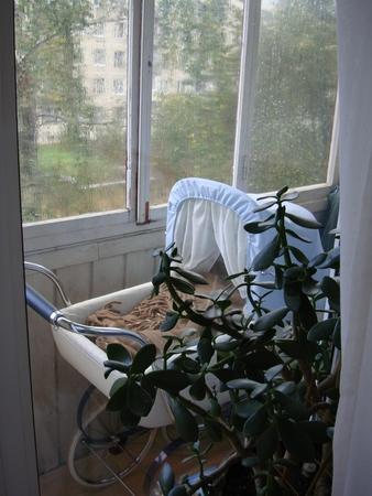 Дневник пользователя евгения (genny) на babyblog.ru.