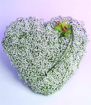 Элегантная орхидея подчеркнет необыкновенность Вашей возлюбленной, а бесконечно нежная гипсофила окутает Её Вашей...