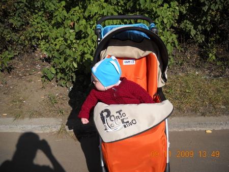 Когда ребенка сажают в прогулочную коляску 55