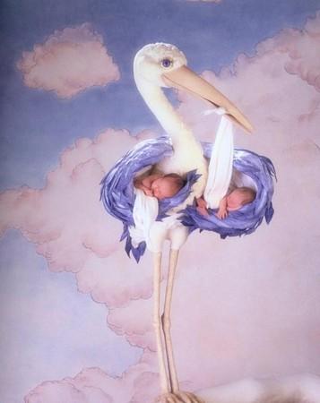 Рождение двойни