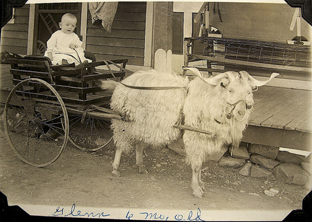 История детсткой коляски