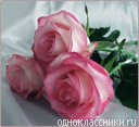 f95ab4f8cb745bbcad7f969182c05966.jpg